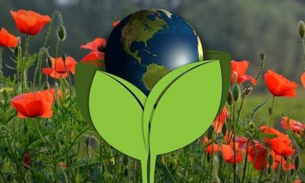 Earth Day 2019 in Raleigh-Durham