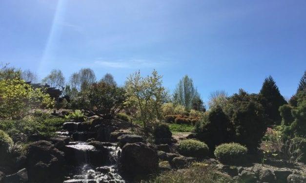 Portland Oregon's 2019 Earth Day Events