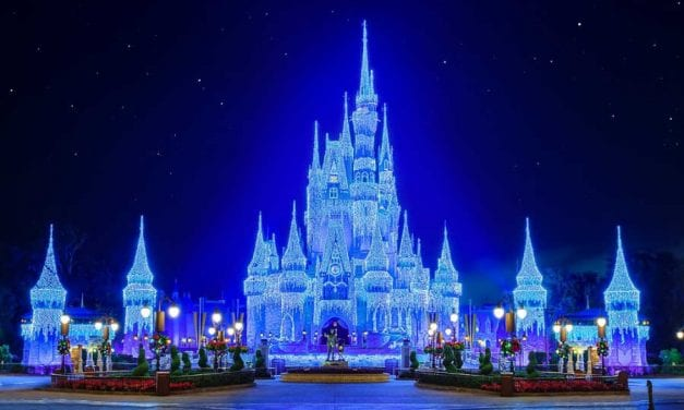 Disney World Christmas for Locals